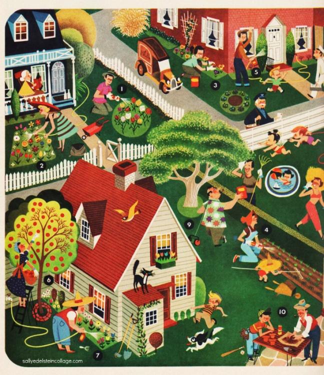 suburbia garden illustration