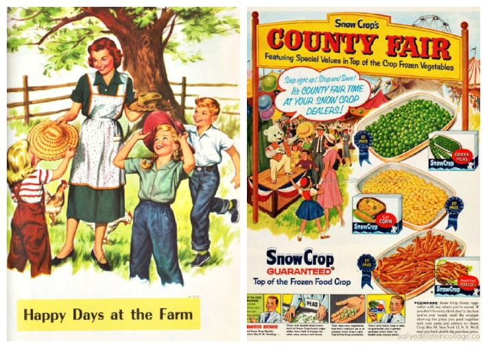Vintage illustration childrens text book on the farm