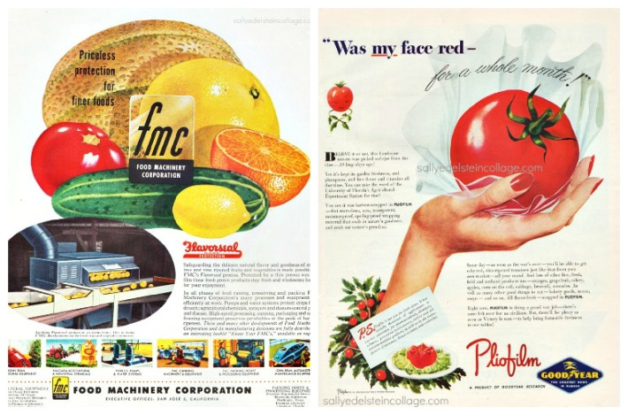 vintage ads art &advertising fruits and vegetable pictures