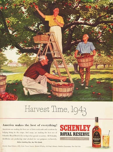 vintage illustration men picking apples 1940s