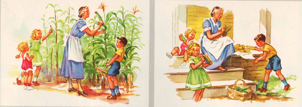 Vintage childrens schoolbook illustration  on the farm 1950s