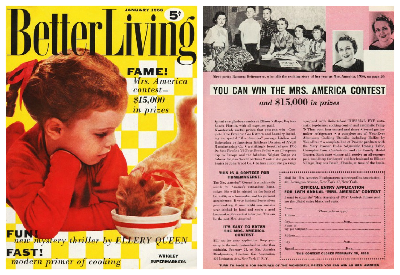 american dream in the 1960s The american dream of the 1930s had been focused on working hard, men provided for their families, and hope to rise above the depression.