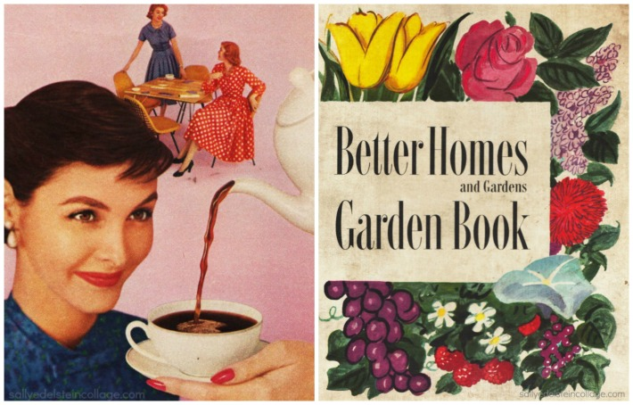 suburbs Housewives Better Homes and Garden Book