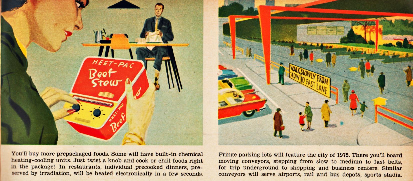 Food City  Predictions
