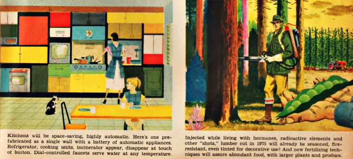 vintage illustrations future homes and forests