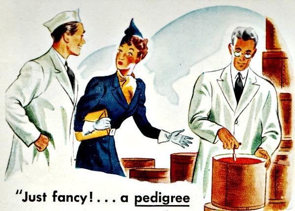 illustration food velveeta 39