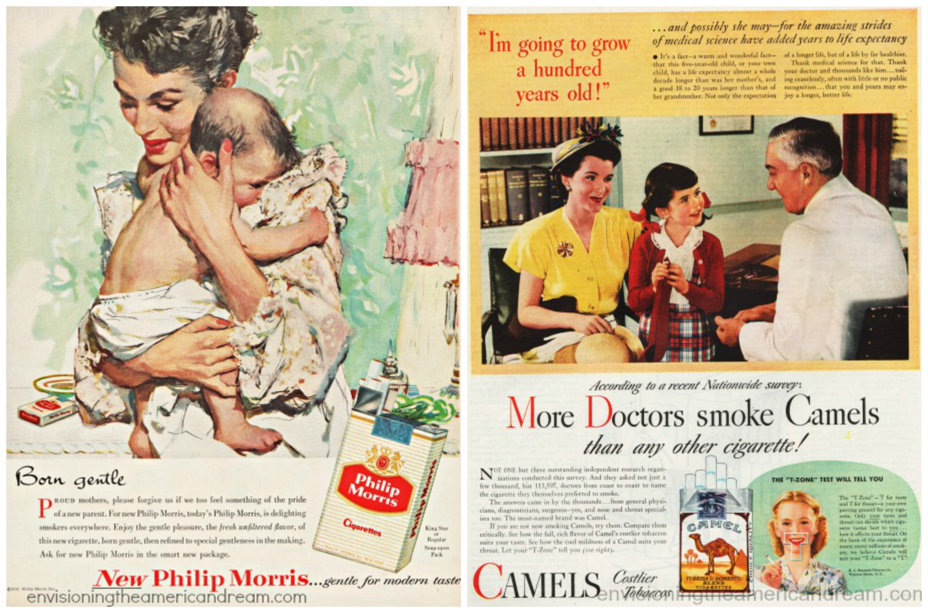 Smoking Baby Camels Dr Child