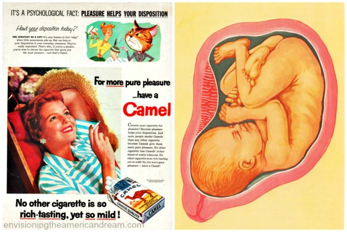 smoking pregnancy camels disposition