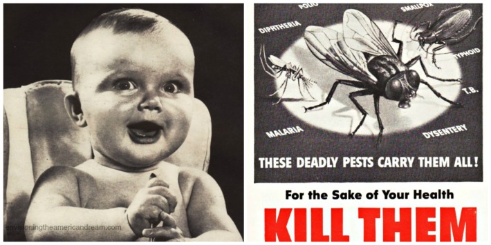Insecticides,Flies and babys