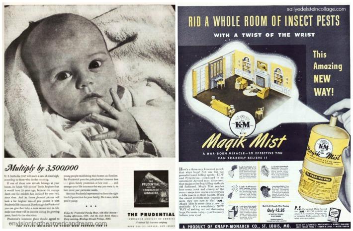 Insurance Baby DDT