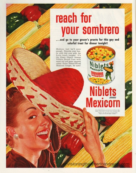 illustration 1950s housewife in sombrero