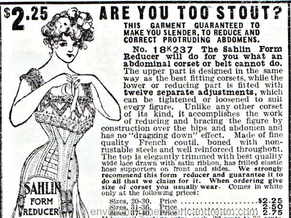 d79230de27a vintage illustration lingerie corsets 1908