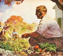 vintage illustration Victory garden