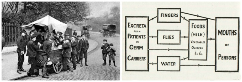 health polio germs spreading 1916