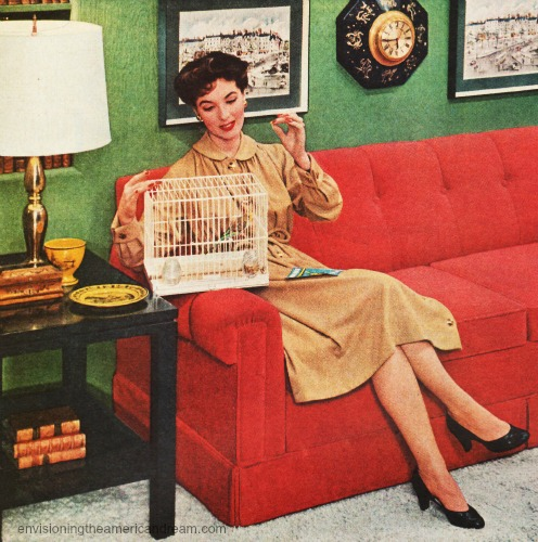 vintage photo 1950s housewife and birdcage