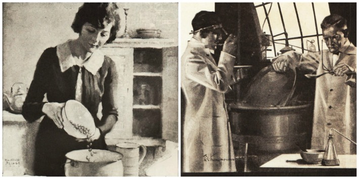 collage vintage illustration woman in kitchen and scientists