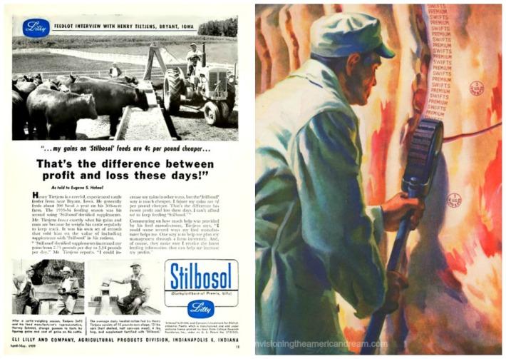 collage vintage ad DES Stilbosol and USDA stamp on meat