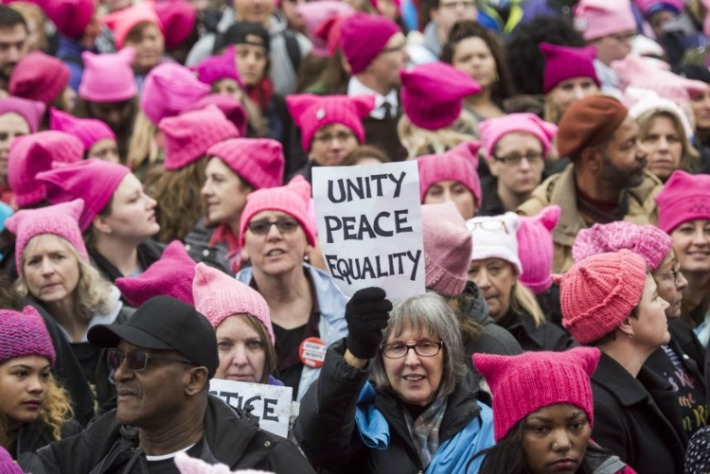 womens-march-privilege-pink hats signs