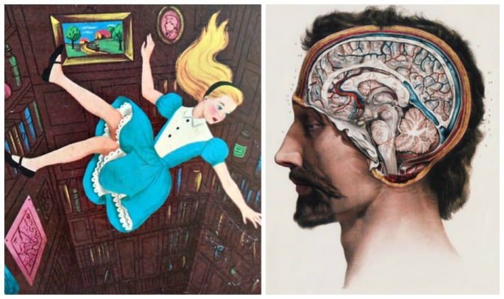 illustrations Alice in Wonderland and vintage brain