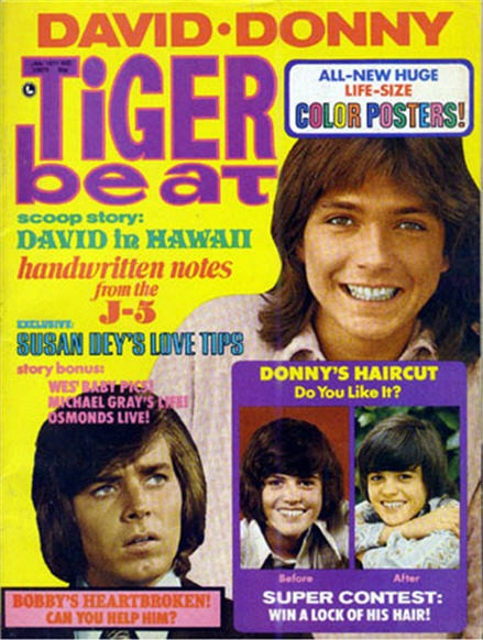 Tiger Beat Magazine David Cassidy on cover