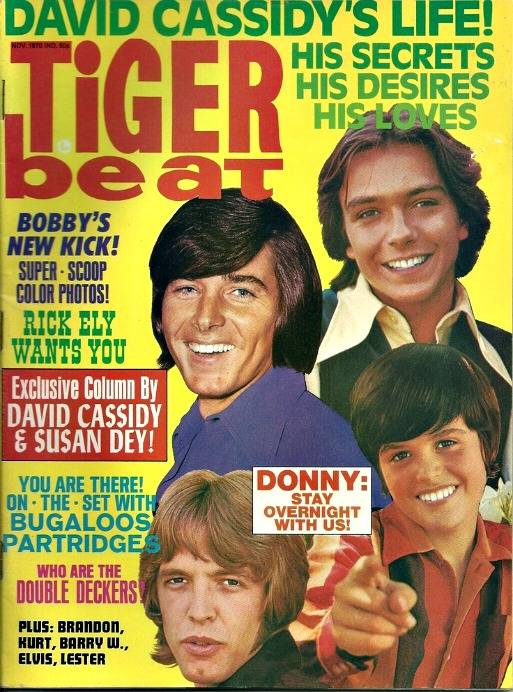 Tiger Beat Teen Magazine 1070s David Cassidy