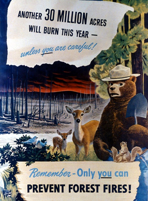 Vintage Smokey Bear Poster 1949