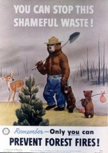 Vintage Smokey Bear Poster 1950s