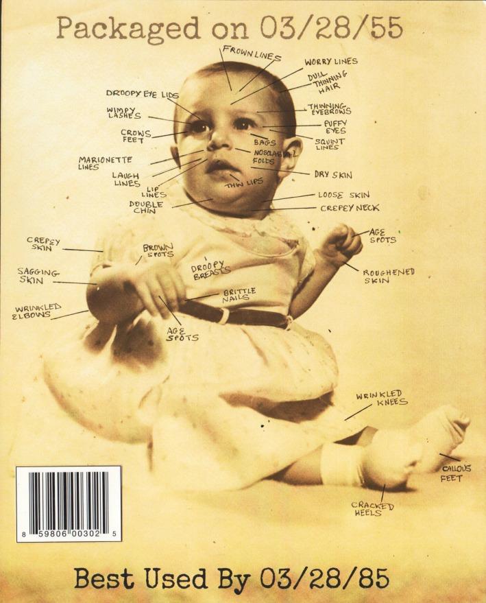 Sally Edelstein Baby Picture Art