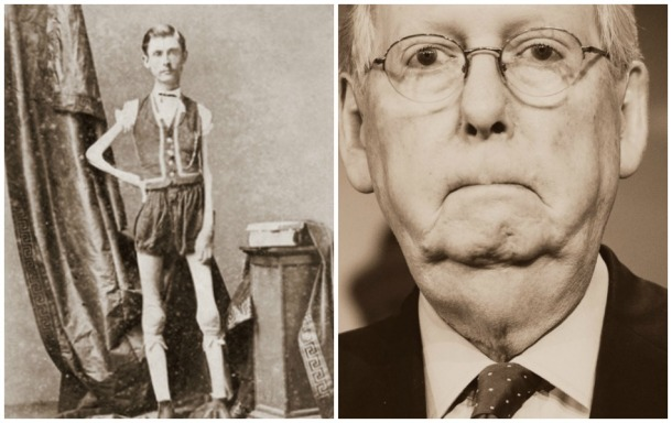 The Human Skeleton and Mitch McConnell