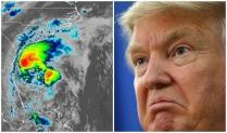 Turmp Storm