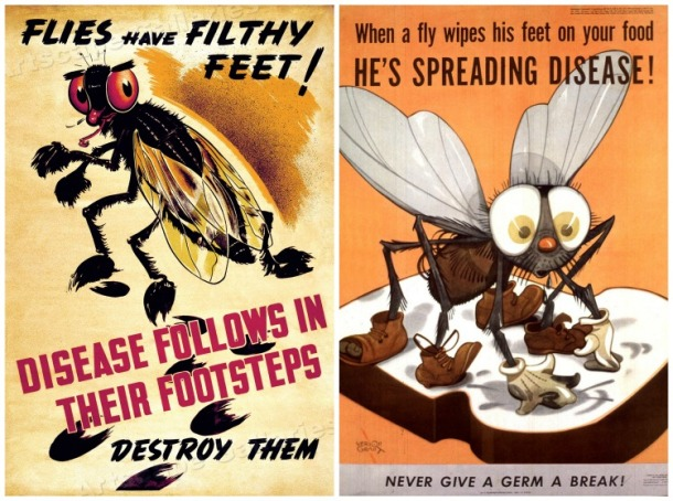 anti fly posters