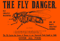 Fly Danger poster