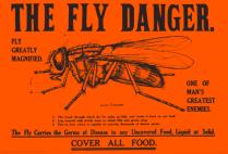 Fly Danger poster