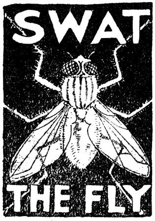 anti fly ad