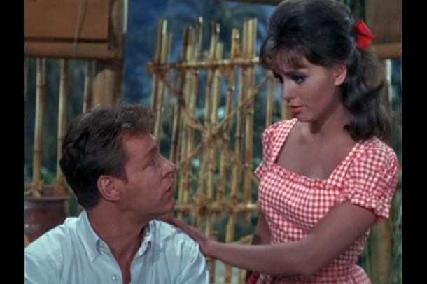 The Proffesor and Mary Ann Gilligans Island
